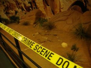 Las Vegas - CSI